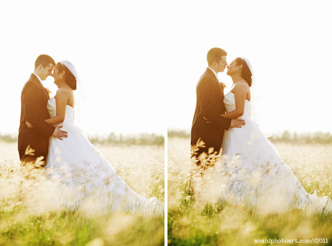 mcallen photographer, mcallen wedding